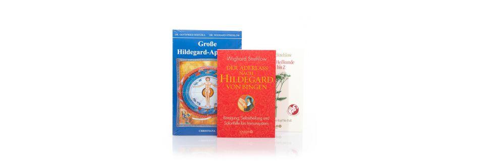 Hildegard von Bingen Bücher und Literatur